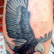 Flygande örn på armen