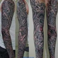Biomech full sleeve