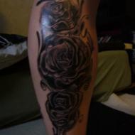 3 rosor som skall färgläggas,gjord av Roger Nilsson på Pulse Tattoo i Motala.han är suveränt duktig!