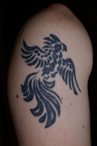 phoenix fågel title=